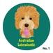 オーストラリアン ラブラドゥードゥル(5色)