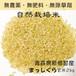 自然栽培米 まっしぐら 【玄米】 1kg