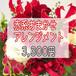 赤系おまかせアレンジメント3,300円【受取り来店】及び【平戸市・平戸市近郊への配達限定】