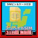【プリペイドSIM】31日間無制限(SIMピン&ケース付き)