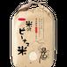 特別栽培米コシヒカリ 2kg