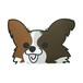 パピヨン(小)  犬ステッカー