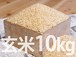 【玄米】丹波産コシヒカリ(10kg)