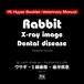 YIL Hyper Booklet - ヴェテリナリマニュアル「ウサギ - X線画像 - 歯牙疾患」