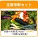 毎週 定期宅配!農家直送の無農薬・有機野菜セット♪