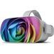Rainbow Rose 虹薔薇