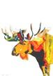 [コラージュ] animalor | ヘラジカ