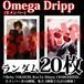 【チェキ・ランダム20枚】Omega Dripp(全メンバー)