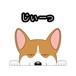 見てまステッカー【ウエルシュ・コーギー・ペンブローク】 犬 ステッカー シール