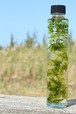 ハーバリウム 円柱ボトル(濃いグリーン)EGR01