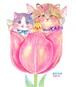 チューリップと猫の妖精とヒヨコ[ポストカード]