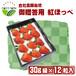 【高糖度イチゴ 糖度15度~ 紅ほっぺ】30g級12粒詰め合わせ【ご贈答用化粧箱入り】