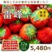国産 夏いちご 雷峰 2トレー Lサイズ 32個 約600g 【クール便】