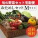 お試し旬の野菜セット&加工品詰合わせセット Mセット(8~9種類) 「2~4人向き」 宅配サービス 【送料無料】