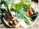 採りたての野菜を厳選して9品セレクト【5回分】