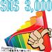 宝箱SNS3000
