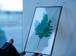 植物絵画:プリザーブドフラワー『メイデンファーン』