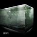 UNIDOTS 2nd EP「鮮明 、あるいは 不鮮明 - clear/blur -」