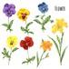 花 Flower 0005-A