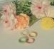 Colorful rings<4rings set>