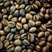ブラジル・ショコラ・ピーベリー【中煎り】100g【豆】
