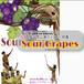 公演DVD『Sour Grapes』(2019)
