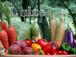 無農薬有機野菜セットLサイズ【5回分】