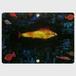 Der Goldfisch black key pass