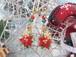 ポインセチアが咲くキラキラクリスマスのピアス