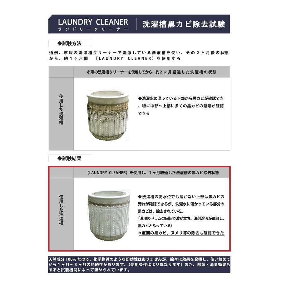 洗濯槽の黒カビ除去試験