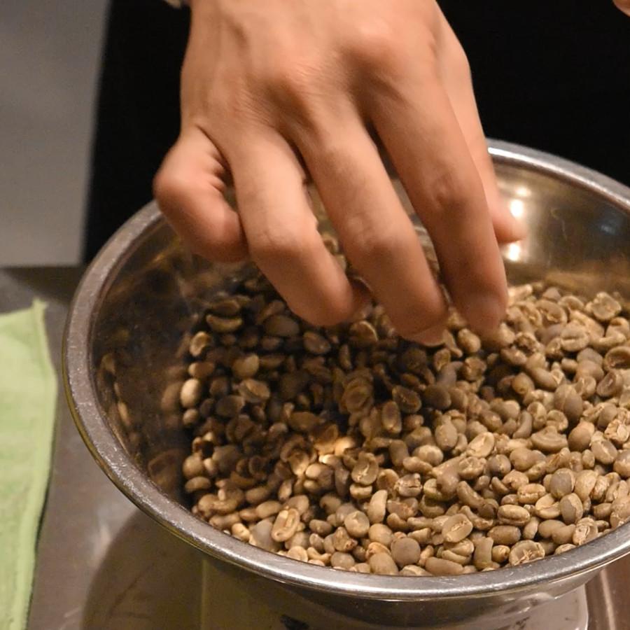生豆から欠点豆を取り除いている様子