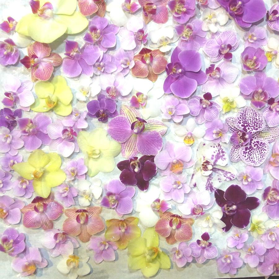どんな色の花が届くかな